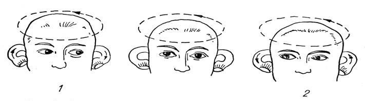 Почему и как возникают головокружения